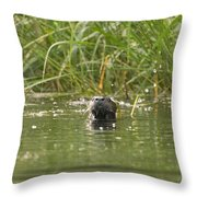 Angry Otter Throw Pillow