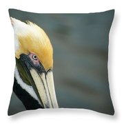 Angry Pelican Throw Pillow