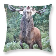 Angry Stag Throw Pillow