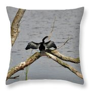 Anhinga And Alligator Throw Pillow