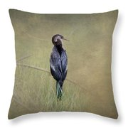 Anhinga By Darrell Hutto Throw Pillow