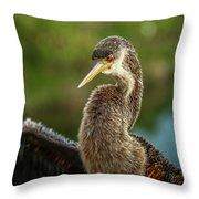 Anhinga Close-up #2 Throw Pillow