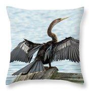 Anhinga Drying Its Wings Throw Pillow