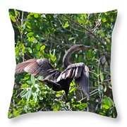 Anhinga In The Sun Throw Pillow