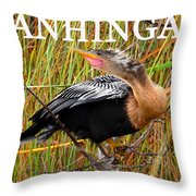 Anhinga The Swimming Bird Throw Pillow