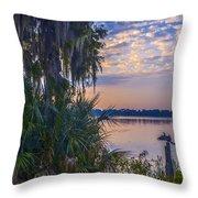 Anhinga's Paradise Throw Pillow