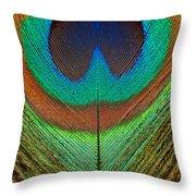 Animal - Bird - Peacock Feather Throw Pillow