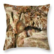 Animal - Squirrel - The Squirrel Throw Pillow