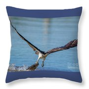 Animal - Bird - Osprey Catching A Fish Throw Pillow