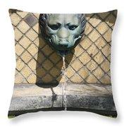 Animal Fountain Head Throw Pillow by Teresa Mucha