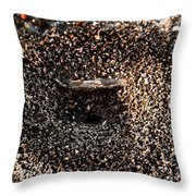 Animal Homes Ants Maybe Throw Pillow