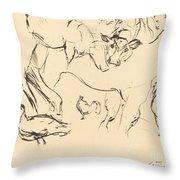 Animal Studies (verschiedene Tierstudien) Throw Pillow