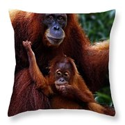 Animals 2 Throw Pillow