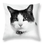 Animals 92 Throw Pillow