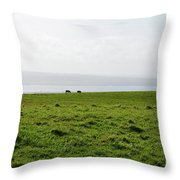 Animals Grazing In A Field Along The Cliffs Of Moher Throw Pillow