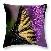 Anise Swallowtail Throw Pillow