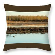 Ankeny Reflections Throw Pillow