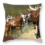 Ankole-watusi Cattle Throw Pillow