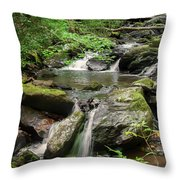 Anna Ruby Falls Throw Pillow