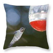 Annas Hummingbird Calypte Anna Throw Pillow