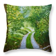 Annecy Forest Afternoon Throw Pillow