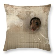 Anneliese Is Ready For Visit Throw Pillow