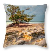 Annes Beach Throw Pillow