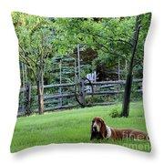 Annie In Her Yard Throw Pillow