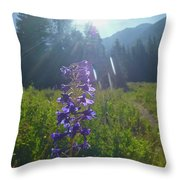 Another Angel On My Shoulder Throw Pillow