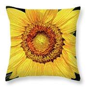 Another Artistic Sunflower Throw Pillow