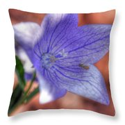 Another Bee Throw Pillow