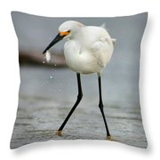 Another Catch Throw Pillow