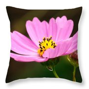 Another Cosmos Throw Pillow