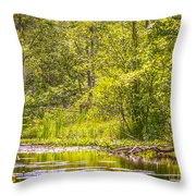 Another Day At The Lake Throw Pillow