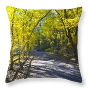Another Fall In Philadelphia Throw Pillow