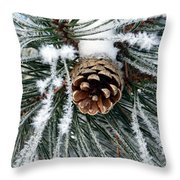 Another Frosty Pine Cone Throw Pillow
