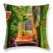 Another Glimpse Throw Pillow