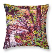 Another Look At Five Mile Mountain Throw Pillow