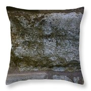 Another Mossy Brick In The Wall Throw Pillow