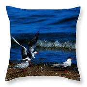 Another One Take A Tern Throw Pillow