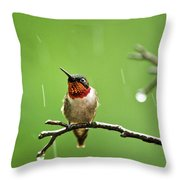 Another Rainy Day Hummingbird Throw Pillow