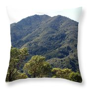 Another Side Of Tam 2 Throw Pillow