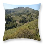 Another Side Of Tam Throw Pillow