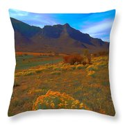 Another View In Unaweep Throw Pillow