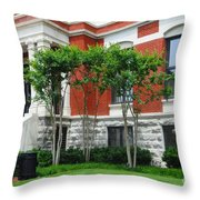 Another View Throw Pillow