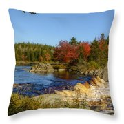 Another View Of Liscombe Falls Throw Pillow