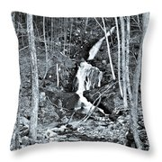 Ansel's Dream Throw Pillow