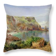 Ansty's Cove Throw Pillow