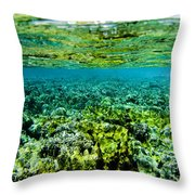 Ant Atoll Reef Throw Pillow