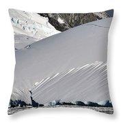 Antarctic Bliss  Throw Pillow